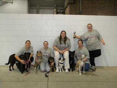 Photo: 2011 CAN-AM Division 9 Champions. Laura & Lulu, Terri, Fire & Milenko, Valerie & Indigo, Jessica, Bob & Mysti, and Amy.